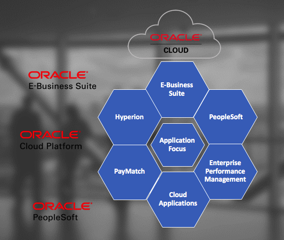 SkyBridge Oracle Application Services